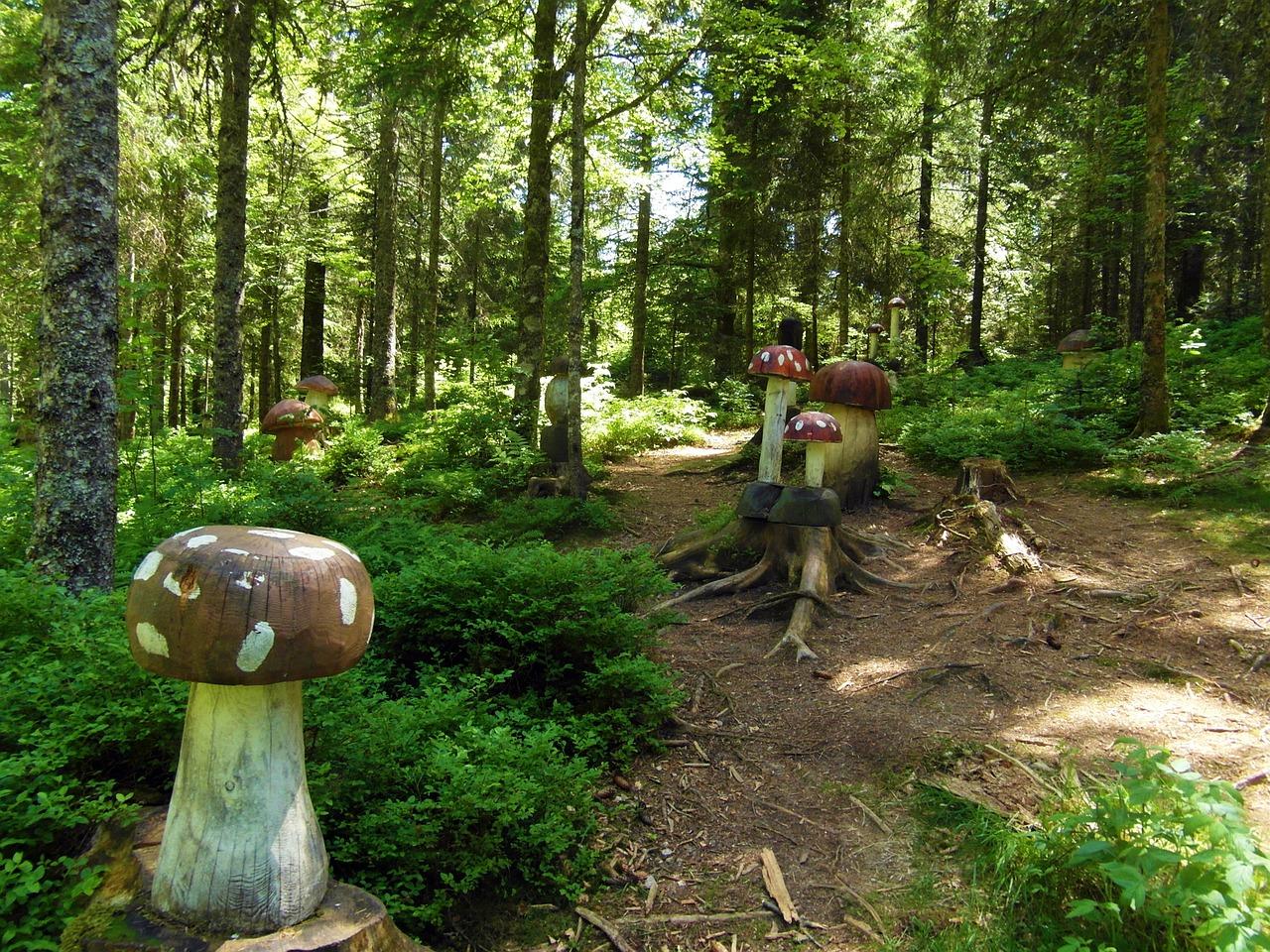 Märchenwald für Kinder