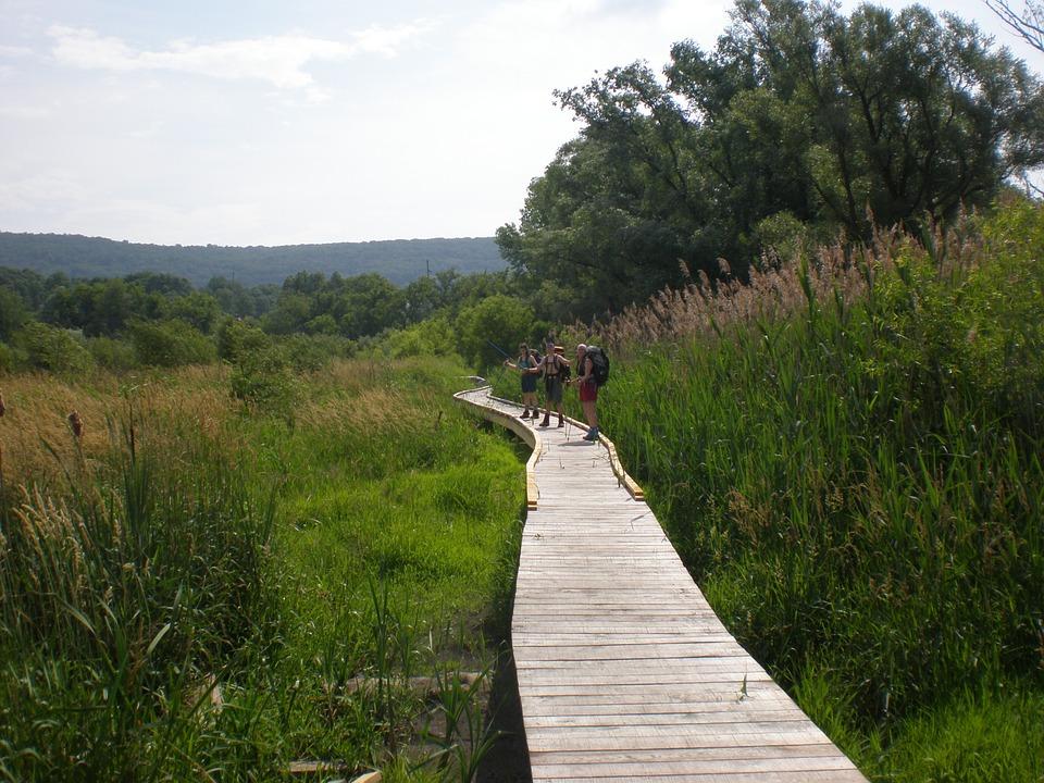 Wandergruppe Appalachian Trail