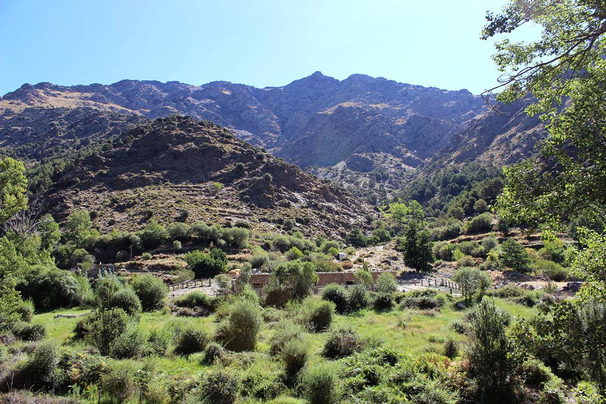 Landschaft der Sierra Nevada