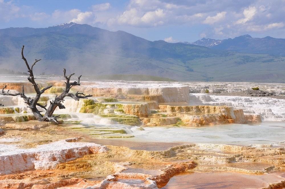 Vulkanogene Landschaft im Yellowstone Nationalpark