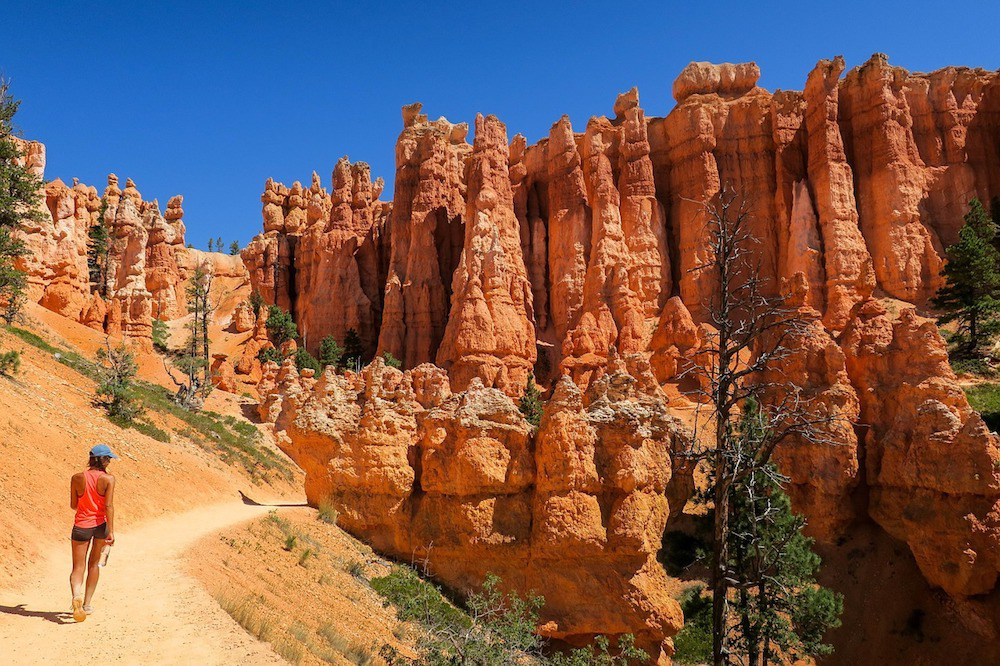 Hoodoos aus rotem Fels im Bryce Canyon Nationalpark.