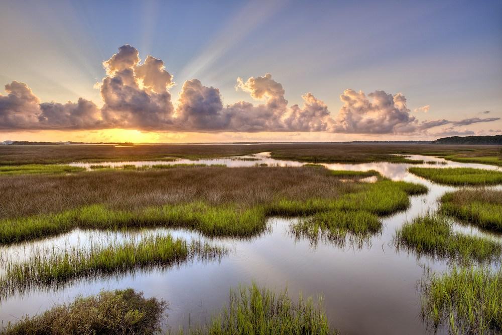 Sumpfland unter einem beeindruckenden Wolkenhimmel im Timucuan Ecological & Historical Preserve.
