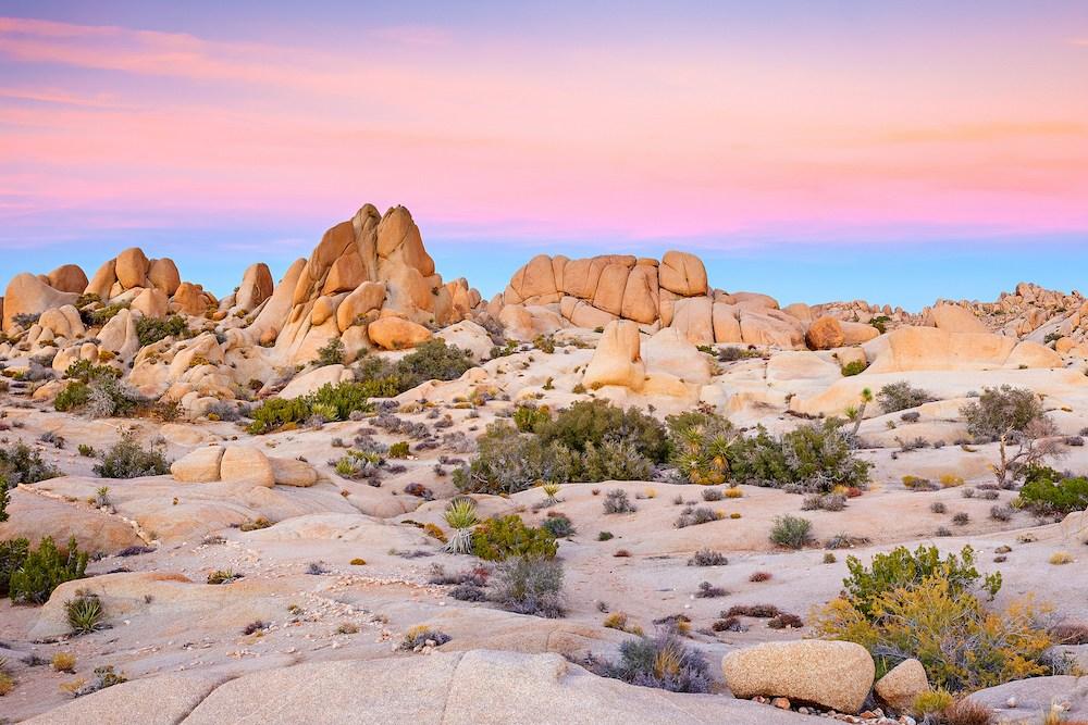 Felsen vor einem, von der untergehenden Sonne bunt erleuchteten, Himmel im Joshua Tree Nationalpark.