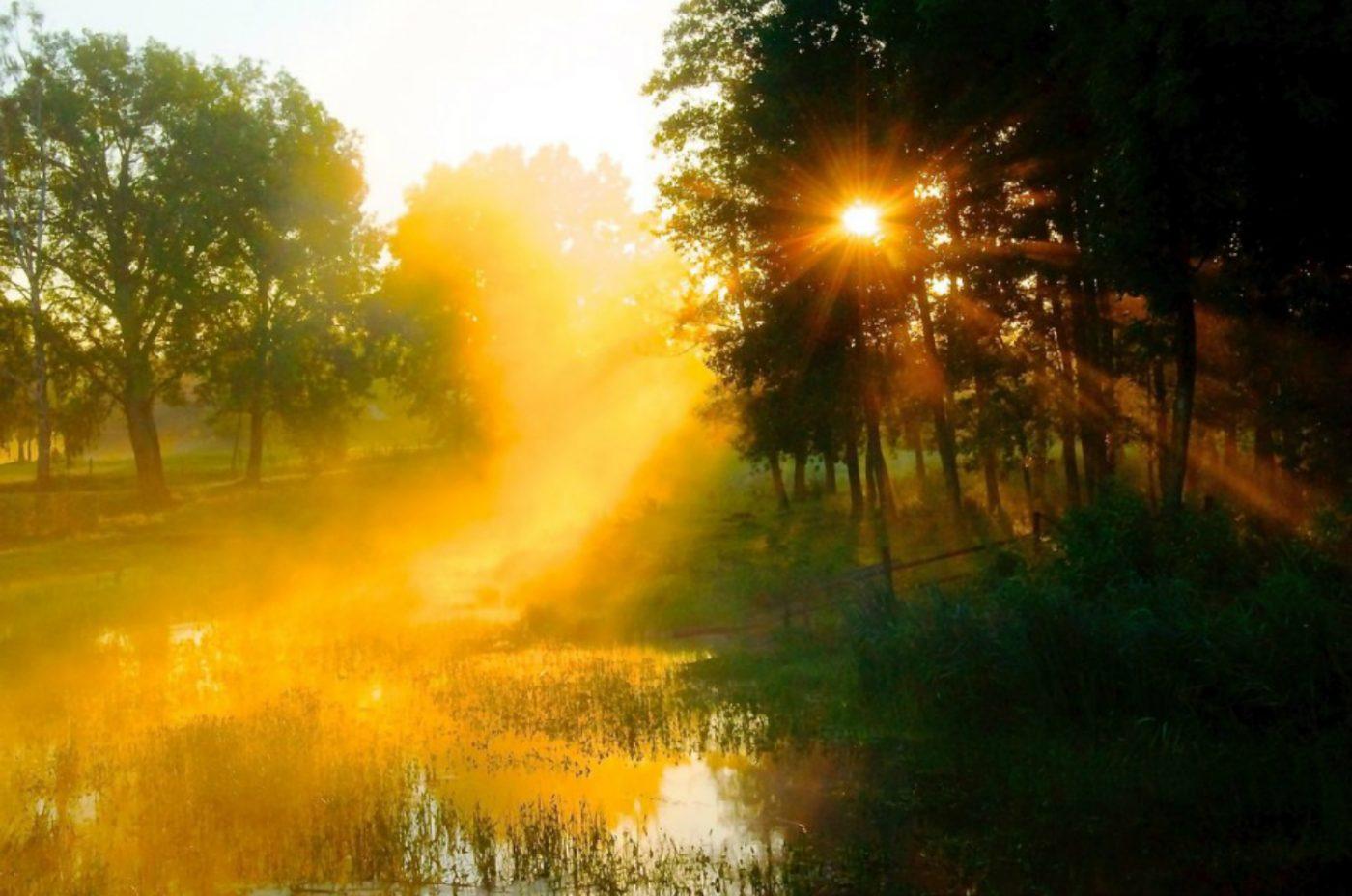 Natur der Masurischen Seenplatte in Polen