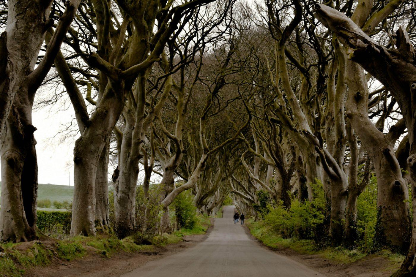 Panorma der Bregagh Road in Nordirland