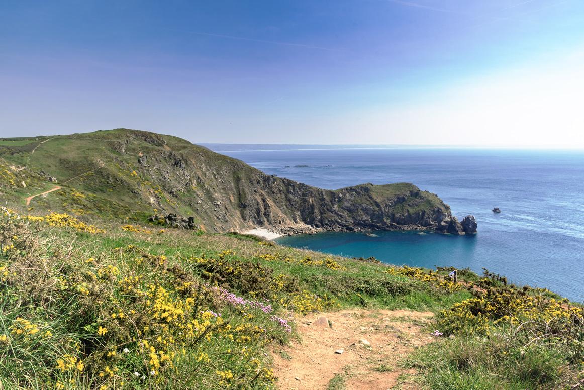 Natur der Halbinsel Cotenin in Frankreich.