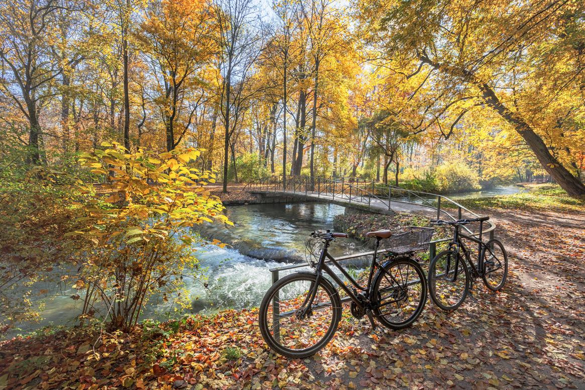 Zwei Fahrräder am Fluss im herbstlichen Englischen Garten in München.