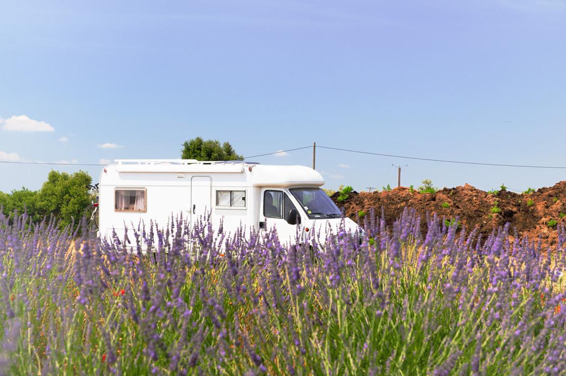 Ein Wohnmobil steht an einem blühenden Lavendelfeld in Frankreich.