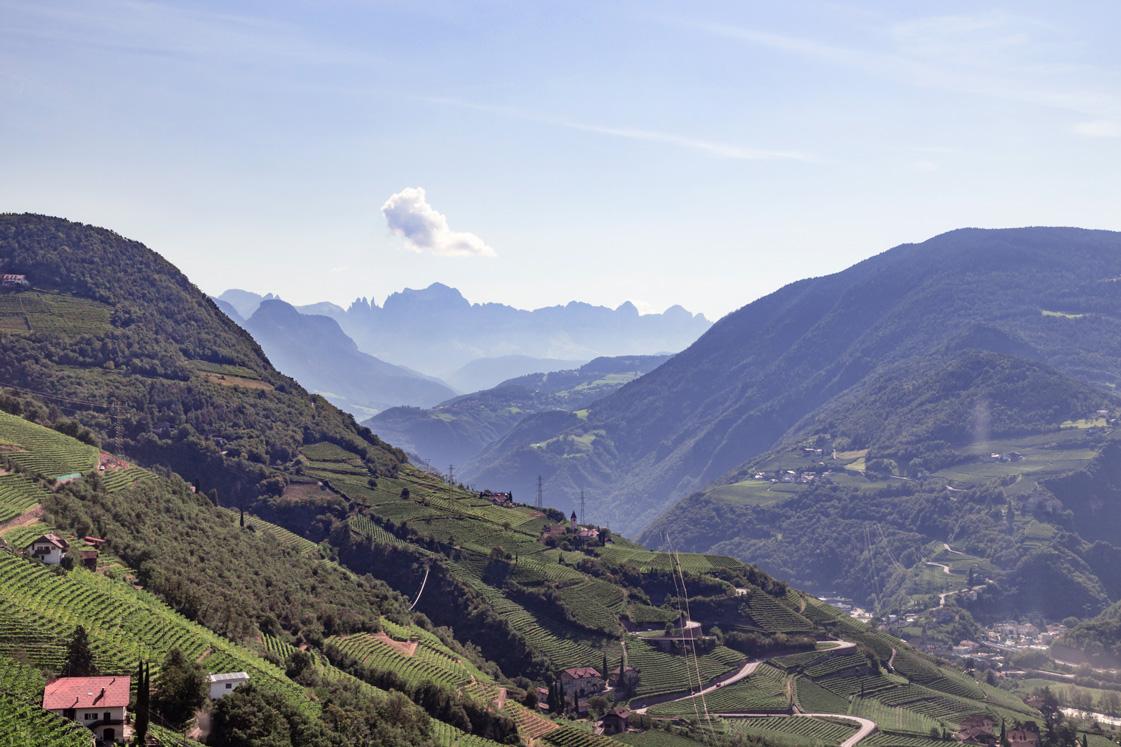 Landschaft mit Bergen rund um Bozen in Südtirol.