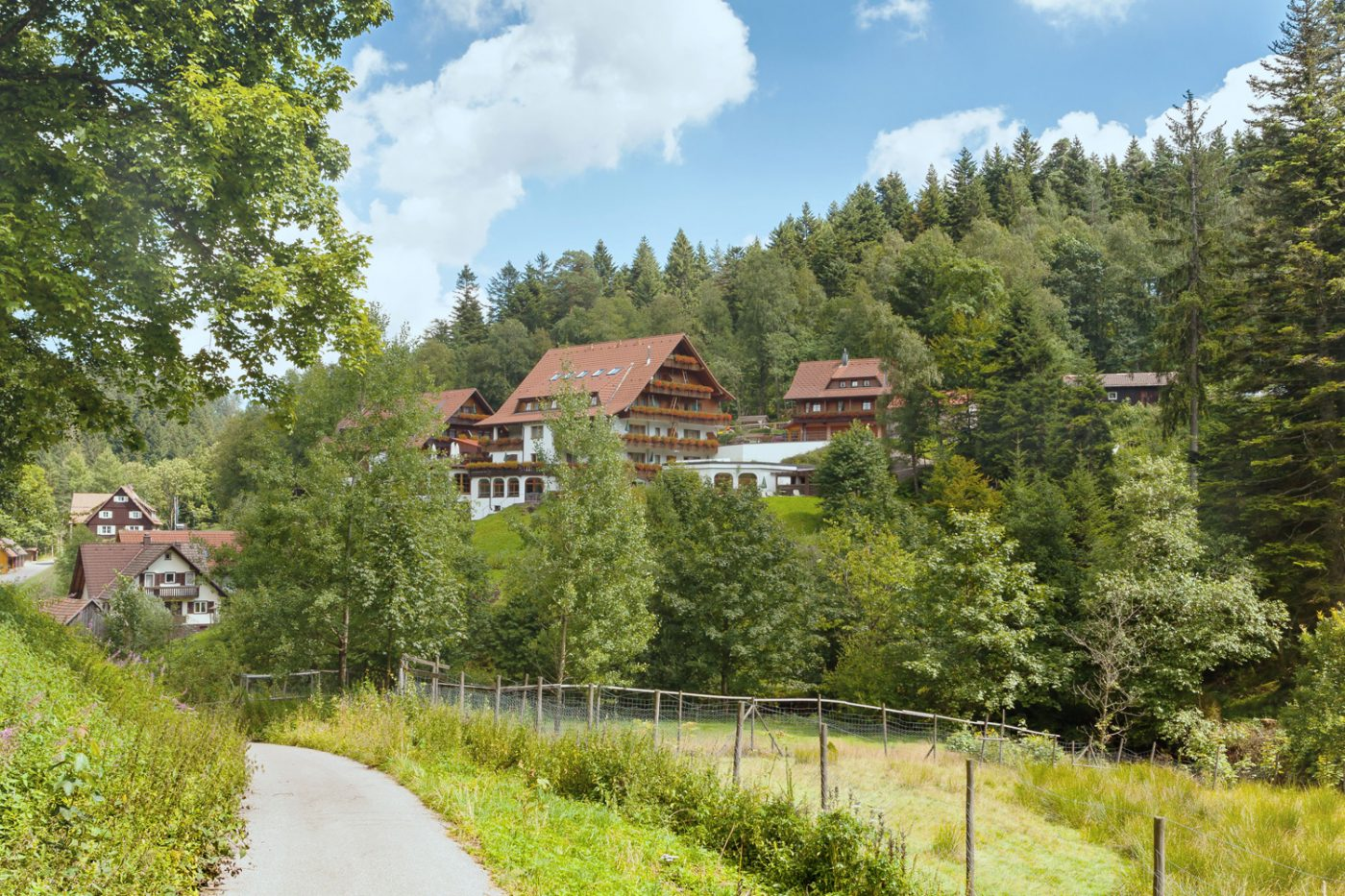 Ein Waldstück mit typischen Häusern im Schwarzwald.