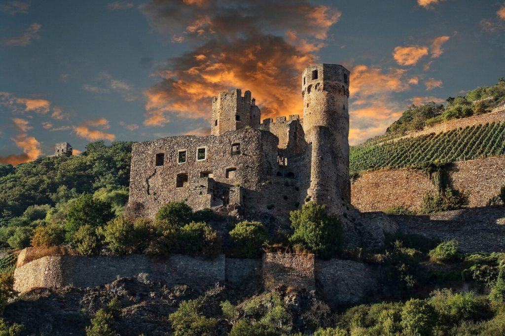 Burgruine am Rhein in den Weinbergen bei Sonnenuntergang